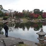 庭園の中にある池