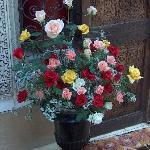 un bouquet de Driss