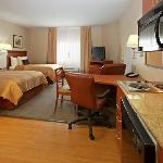 Beautiful appointed guest suites