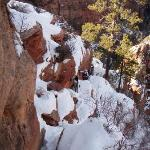 Angel's Landing... with just an inch or so of snow... NOT!
