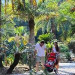 Viale dell Giardino Botanico