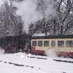 Steaming on the Harz Mountain Railway