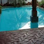 Miss Magrit's Pool and Handmade Tiles