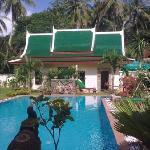 Blick auf Pool und Garten von der Terasse