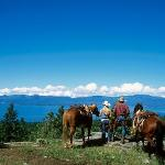 Horseback riding on the Lodge property overlooking Flatehad Lake