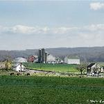 Lancaster Amish Farmland