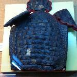 Body armor made of alligator skin