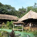 Photo de Amazon Village Jungle Lodge