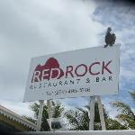 Hanging out at Red Rock!!