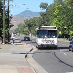 Bus # 44 at 44 and Kipling, Wheat Ridge