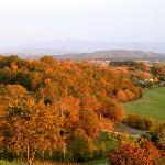 Autumn at Braeside.