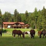 Rich Ranch summer lodge