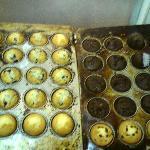 frische Muffin