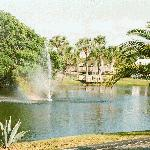 Our Private Fishing Pond