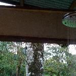 open-window shower