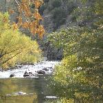 Kern River in the Fall