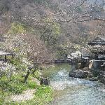 大沢温泉の景色
