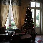 Xmas tree in Living room