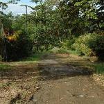 The Little Road Faya Lobi is On