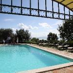 Swimming pool Villa San Crispolto