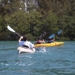 Family fun kayaking