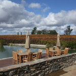 Grapeline Wine Tours, Paso Robles