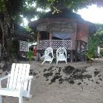 fale on the beach