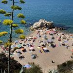 Playa, Beach