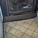 Mold on the walls and the carpet
