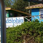 Arriving at The Dolphin Experience.