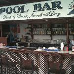 The fab pool bar !!