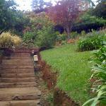 Photo of Orchids Safari Club