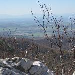 A view from a hiking trail on the Skyline Drive