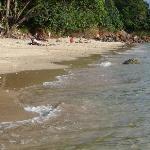 La plage au pied de l'hôtel