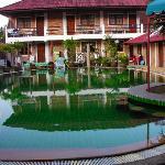 The green swimming pool