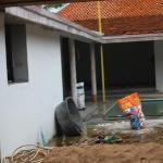next door to our villa Jasmine