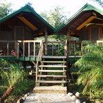 Photo de The Belize Zoo