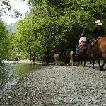 Horseback Riding at Clayoquot