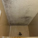 mould in the bathingroom