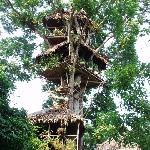 Tree house at La Casa Fitzcarraldo