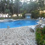 The pool area & one of their ambassadors
