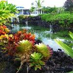 Foto de Holua Resort at The Mauna Loa Village
