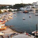 Linaria harbor