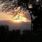 sunrise on my terrace