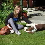 The friendly dog Buckley