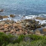 The rugged coastline