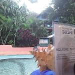 Pool's pool