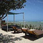 Chaises longues et lit de plage