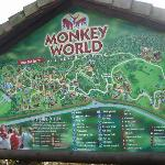 Monkey World attraction map