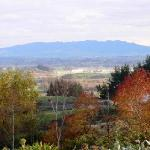 Views of Mt. pirongia